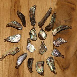 Abalone schelp hanger
