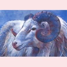 Loes Botman – Ram II