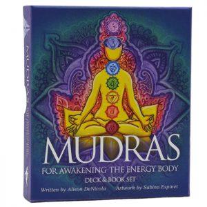 Alison DeNicola – Mudras for awakening the energy body
