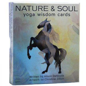 Alison DeNicola – Nature & soul yoga wisdom cards